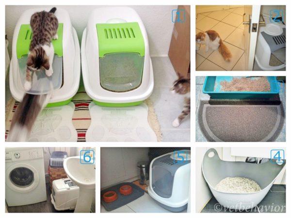 猫のトイレの悪い例